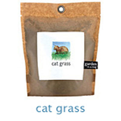 Cat Grass Garden In A Bag