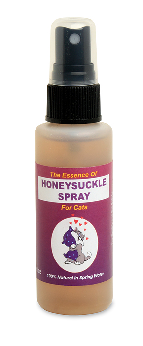 Honeysuckle Spray