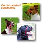 Gentle Leader Head Collar