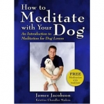 How To Meditate With Your Dog